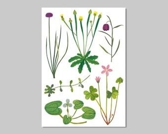 Plant friends print