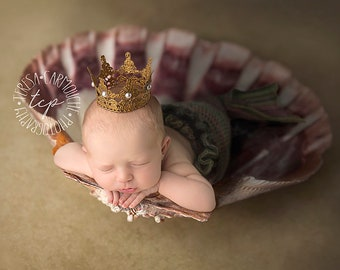 Shell Digital Backdrop for Newborn or Baby Photography