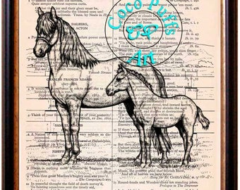 Mare & Colt Drawing Beautifully Upcycled Vintage Dictionary Page Book Art Print, Horse Print