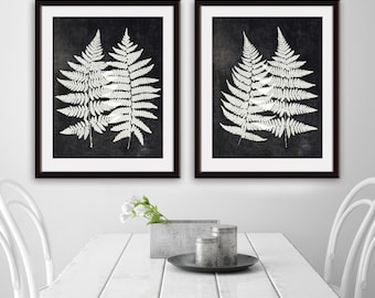 Fern Fantasy Impressions (Series C2) Set of 2 - Art Prints (Featured in Black Wash Linen) Nature Woodland Inspired