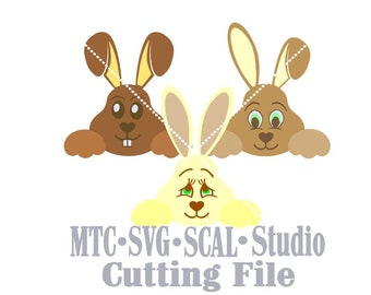 SVG Cut File Easter Bunny Set #3 Bundle of 3 Scrapbooking  MTC SCAL Cricut Silhouette Cutting Files