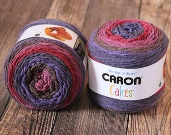 Caron Cakes Yarn - Blackberry Mousse - Wool Blend Yarn - Self-striping yarn - Michael's exclusive yarn - Skein of Caron Cake Yarn