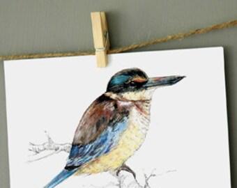 New Zealand native bird, Kōtare (or Kingfisher) postcard, print from original watercolor and ink painting artwork, Wild life wall art