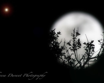 Fine Art photography- Moon photo- moon print- Home Décor- Black & White photography- Wall art- fine art- night photography- moon-