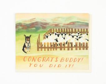 Sheep Dog Congratulations Card