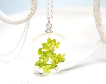 Hydrangea Necklace - Real flower and resin pendant , white gold plated silver chain necklace - pressed flower, light green, botanical jewel