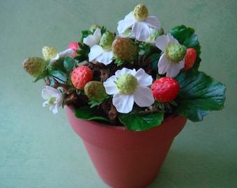 Handmade Mini Strawberry Plant (CF0031)
