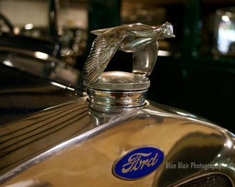 1941 Ford Victoria Coupe Hood Ornament print