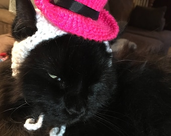Pink Top Hat for Cat