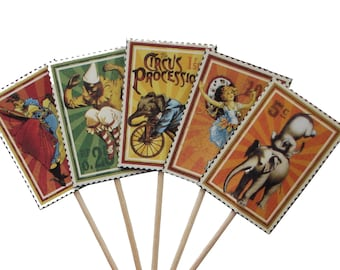 24 Le Cirque Wizards of Wonder Party Picks, Toothpicks, Cupcake Toppers, Food Picks, Sandwich Picks - No960