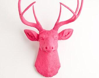 Taxidermy Deer Head Mount - The Alejandra - Pink Resin Deer Head, Pink Resin Stag by White Faux Taxidermy
