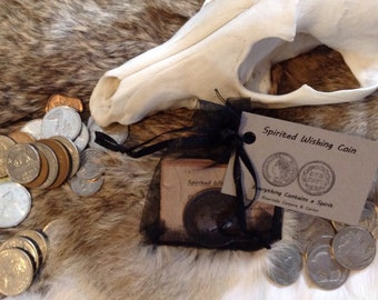 Spirited Wishing Coins - haunted, historical, mystery
