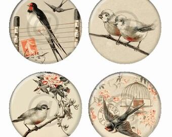 Vintage Birds in Tan Orange Magnets or Pinback Buttons or Flatback Medallions Set of 4