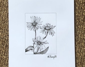 Daisy Flowers Original Artwork Illustration drawing A4