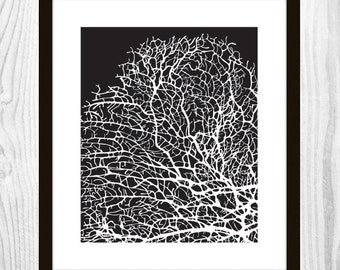 "Midnight BLACK Coral Printable Art - 8x10"" DIY Print"
