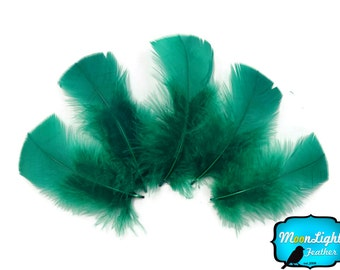 Wholesale Feathers, 1/4 lbs - KELLY  GREEN Turkey T-Base Plumage Wholesale Feathers (bulk) : 3450