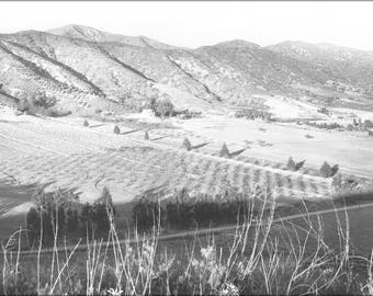 Poster, Many Sizes Available; Panoramic View Of Eagle Rock Valley, Los Angeles, Ca.1908 (6324) #031215