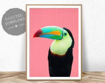 Toucan Bird Print, Printable Wall Art, Tropical Parrot Decor, PrintableDigital Download, Bright Colourful Large Poster, Kids Room Bedroom
