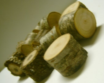 5 Miniature Tree Stumps Assorted Wood Grains DIY Fairy Garden Supply