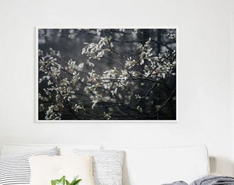 """Large Floral Print Bedroom Wall Art // Wild Cherry Blossom Floral Print Oversize Art for Bedroom // Large Floral Art Print  """"Early Blossoms"""""""