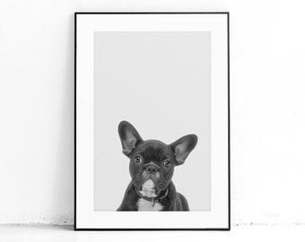 Printable Frenchie Wall Art, French Bulldog, Nursery Decor, Kids Room Decor, Dog Poster, Nordic Print Design, Minimal Animal, Monochrome Art