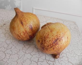 two porcelain brown onions faux food super realism sculptures photo stylist