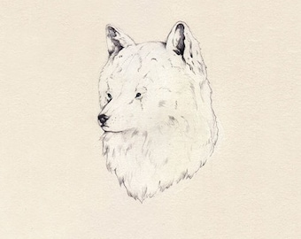 ON SALE The White Wolf limited edition print...
