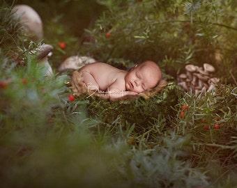 Digital Background Newborn Fantasy Garden