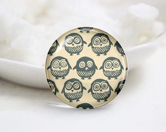 Owl Photo Glass Cabochons (P3824)
