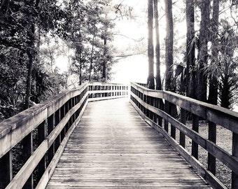 Boardwalk in the Park Black & White Fine Art Print - Travel, Scenic, Landscape, Nature, Home Decor, Zen
