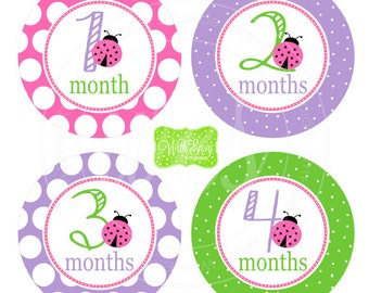 Pink Ladybug Baby Monthly Stickers - Baby Bodysuit Stickers - Monthly Baby Stickers -Girl Monthly Stickers - 003
