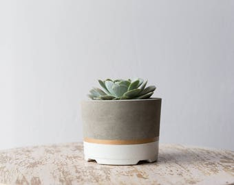 Large Concrete Planter, White & Gold