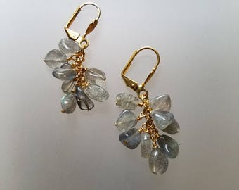 Labradorite Cluster Earrings on Gold Plated Stainless Steel Leverbacks