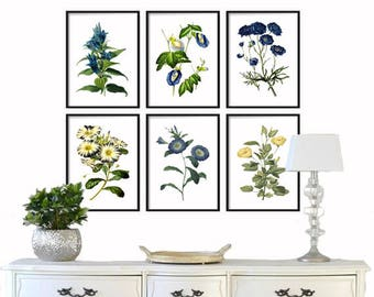 Botanical Print Set of 6 - Botanical Prints - Giclee Canvas Art Print - Antique Botanical Prints - Posters Blue Yellow Flowers Wall Art Set