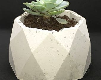 Medium Geometric Succulent Plaster Pot-  Octogon Pot- Plaster Pot- Succulent Pot