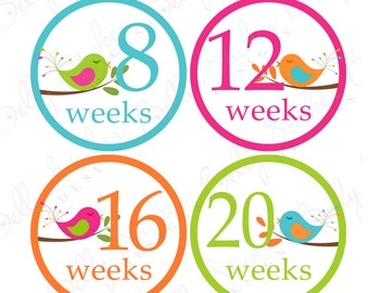 Pregnancy belly stickers Sweet Birds Girl (029-2P) PLUS FREE Labor Day Sticker