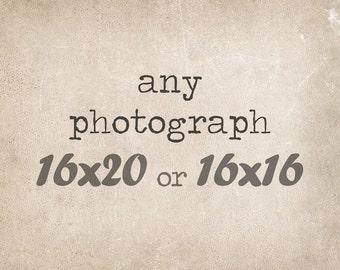 Fine Art Photography, 16x20 or 16x16 Custom Print, Fine Art Print