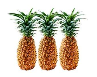 Pineapple Print, Pineapple Decor, Pineapple Wall Art, kitchen wall art, Pineapple Painting, Tropical Pineapple, pineapple, pineapple art