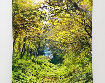 Forest Tapestry, Tree Tapestry, In The Woods, Botanical Large Wall Decor, Photo Tapestry, Modern, Dorm, Wall Hanging, Nature, Green, Office