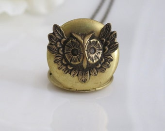 Nature Vintage Inspired. Antiqued Gold Raw Brass Locket. Aged Brass Woodlands Owl. antiqued brass Long Necklace. For Her. Graduation Gift
