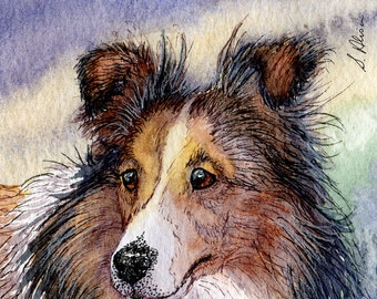 Sheltie dog 8x10 art print from a watercolor painting by Susan Alison Shetland Sheepdog sable herding collie