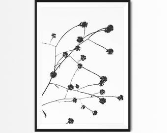 Winter Art Print, Black and White Botanical, Nature, Scandinavian Wall Art, Plant, Nordic, Minimalist Wall Art, Contemporary Art, Printable