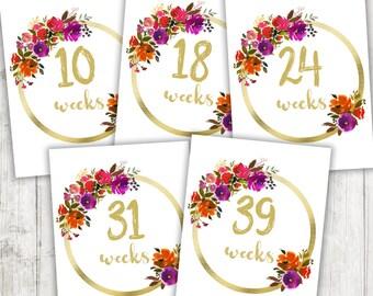 Weekly Pregnancy Photo Prop, Printable Pregnancy Weeks, Pregnancy Week Signs, Instant Download 8.5x11, Gold Flowers, Weeks 4 - 42