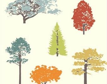 Birch 100% Organic Feather River by Jay Cyn Designs Canopy in Cream by the Yard