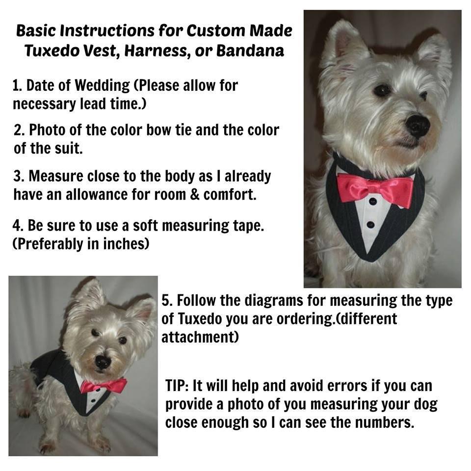 Noir smoking formelle pour chiens, fait sur mesure, Custom Custom mesure, Fit, tenue de mariage pour animaux, noeud papillon couleur de votre choix pour correspondre à la fête de mariage. f70da0