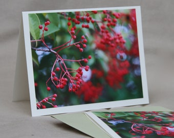Red Holly Berry Stationery Set, Cards Green Christmas Photography Woodland Nature Stationary Set