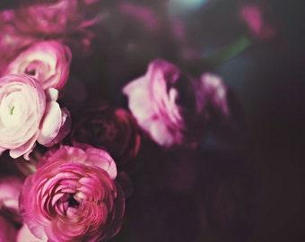 Still life photography - ranunculus flowers deep tones rich color dark photography romantic flowers romantic home decor floral flower photo