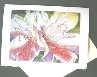 Azaleas, Note Card, 5 x 7, Blank, Greeting Card, Spring, Flowers, Florida, Watercolorsnmore