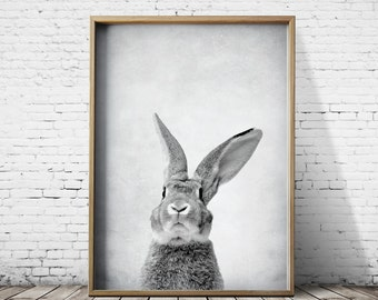Bunny - Rabbit Print - Woodlands Print - Bunny Rabbit Wall Art - Bunny Rabbit Poster - Bunny Rabbit Art - Bunny Rabbit Poster Animal Prints