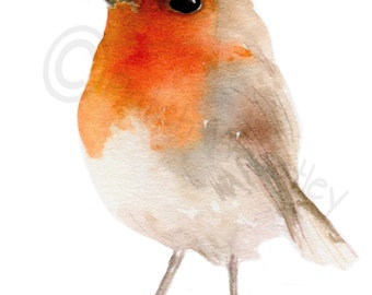 Robin Bird, Art Print #86